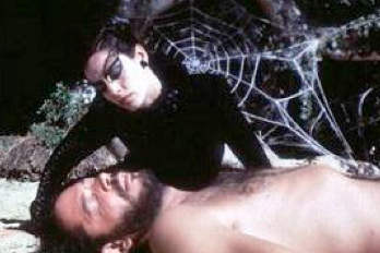 """""""Le Baiser de la femme-araignée"""""""